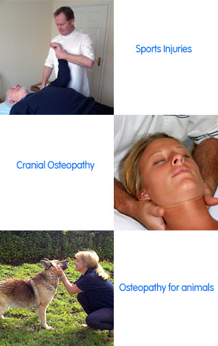 Image of Osteopathy Mumbles main services